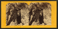 Fish cave, Marquette, from Robert N. Dennis collection of stereoscopic views.png