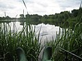 Fishing on Grey Mist Mere, Woolston, Warrington - geograph.org.uk - 266600.jpg