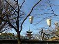 Five-storied Pagoda Kan eiji - uenopark-march26-2016.jpg