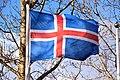 Flag of Iceland 04.jpg