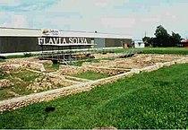 Flavia.jpg