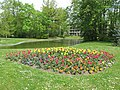 Flower bed near the pond of the parc de l'Aulnaye.jpg