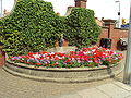 Flowers, Isaac's Hill, Cleethorpes - DSC07271.JPG