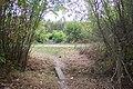 Footbridge in Thornden Wood - geograph.org.uk - 1524066.jpg