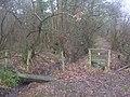 Footpath junction near Roughstocks Wood - geograph.org.uk - 1721119.jpg