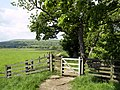 Footpath north west of Buckden - geograph.org.uk - 834628.jpg