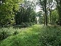 Forêt de Mormal - Nerviens 03.jpg
