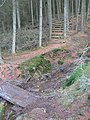 Forestry Footpath in Bryn Llefrith Forest - geograph.org.uk - 121092.jpg