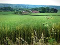 From the North Downs Way, near Wrotham - geograph.org.uk - 1383244.jpg