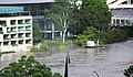 GOMA and State Library buildings and debris floating down stream on the Brisbane River.jpg