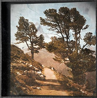 "Structural coloration - One of Gabriel Lippmann's colour photographs, ""Le Cervin"", 1899, made using a monochrome photographic process (a single emulsion). The colours are structural, created by interference with light reflected from the back of the glass plate."