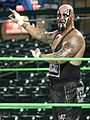 Gallows Professional Wrestler.jpg