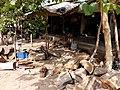 GambiaSerrekundaBrikama028 (12029621534).jpg