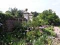 Garden at Doddington Hall - panoramio - PJMarriott.jpg