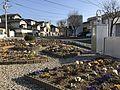 Garden in Takamidai, Higashi, Fukuoka.jpg