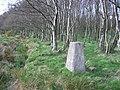 Gartenkeir Trigpoint - geograph.org.uk - 6052.jpg