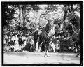 Gen. Pershing parade, Sept. 17, 1919 LCCN2016844480.tif