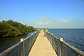 Gfp-florida-biscayne-national-park-boardwalk.jpg