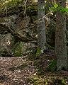 Giant boulder in Gullmarsskogen ravine.jpg