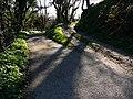 Glen Maye, evening sunlight - geograph.org.uk - 779195.jpg