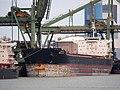 Golden Brilliant (ship, 2013) IMO 9438638, Mississippihaven pic2.JPG
