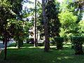 Grădina Publică municipiul Târgu Jiu img-07009.jpg