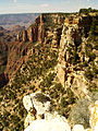 Grand Canyon Walhalla plateau. 06.jpg