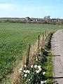 Great Isle Farm from Little Isle Farm - geograph.org.uk - 390186.jpg