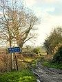 Green lane off Ffordd y Fron, Nercwys - geograph.org.uk - 299925.jpg