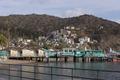 Green pier on Santa Catalina Island, a rocky island off the coast of California LCCN2013634836.tif