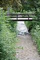 Große Laine-bjs110615-03.jpg