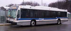 Buses are a common means of traveling by road.