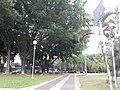 Guarulhos - panoramio (1).jpg