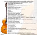 Guitar classification3.png