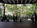 HKU 香港大學 Sun Yat-Sen Lotus pool tree April 2019 SSG 01.jpg