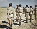 HM King George VI Visits An Advanced Royal Air Force Airfield in Italy, 26 July 1944 TR2148.jpg