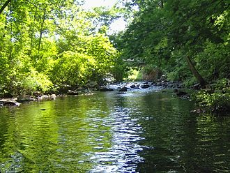 Lawrence Brook - One of the few undammed sections of Lawrence Brook (below Davidsons Mill Pond)