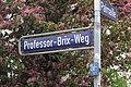 Hamburg-Altona-Altstadt Professor-Brix-Weg.jpg