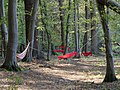 Hammock after protest in the Hambach forest 03.jpg