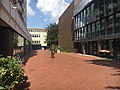 Harburger Rathauspassage.jpg