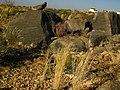 Hardap Region, Namibia - panoramio.jpg