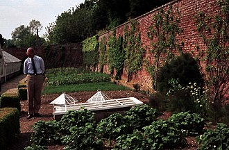 Harry Dodson - Harry Dodson at the south facing wall of The Victorian Kitchen Garden, 1989