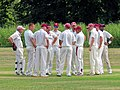 Hatfield Heath CC v. Takeley CC on Hatfield Heath village green, Essex, England 41.jpg