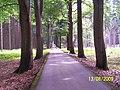 Haugwitzova alej-alibaba - panoramio.jpg