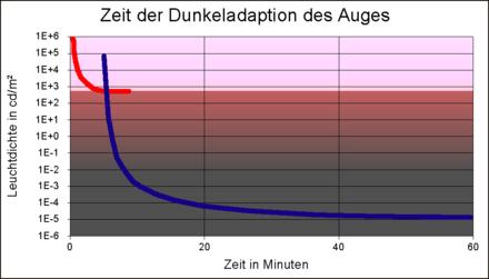 Adaptation (Auge) – Wikipedia