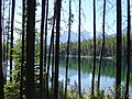 Herbert Lake - panoramio.jpg