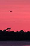 Hercules welcomes Swansboro sunrise 150309-M-PJ332-004.jpg