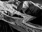 Herron Glacier, mountain glacier, August 8, 1957 (GLACIERS 5152).jpg