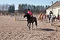 Hevosten kunniakierros.jpg