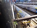 High Line td 88 - West Side.jpg
